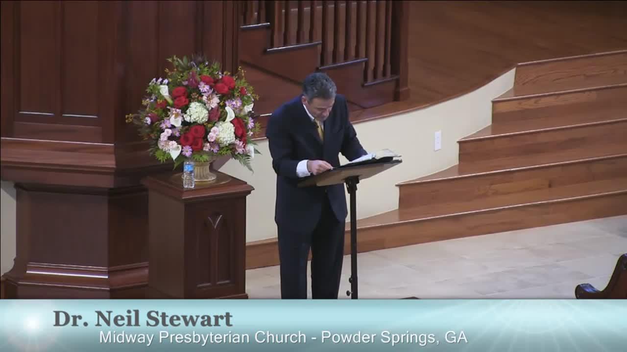 Neil C. Stewart